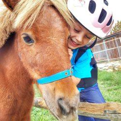 Ponys Rosper Inn